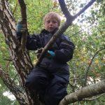 forestschoolnov15_307