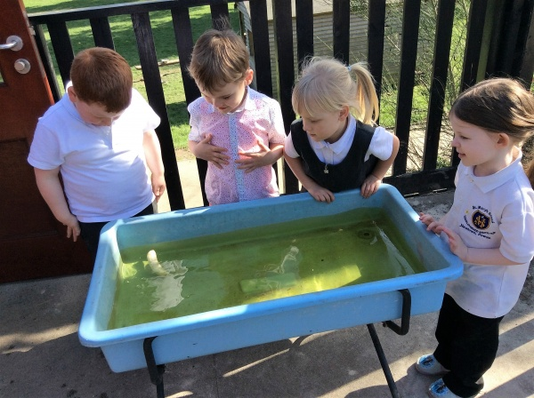 We wanted to find out what would sink and what float.