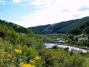 Glyncorrwg-ponds