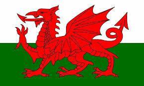 wlesh flag