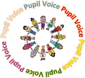 Pupil voice pic