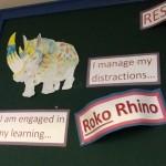 Roko Rhino