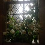 St Catherine's Church Flower Festival 003