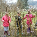 Willow Weaving 26 March 2013 019