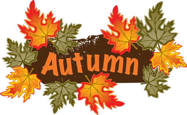Autumn Term newsletter 2019 – rhos primary school