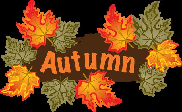 Autumn Term newsletter 2019 – rhos primary school